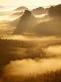 Kall dimmig soluppgång i en nedgångdal av Sachsen Schweiz parkerar Sandstenmaxima ökande från dimma, dimman färgas till apelsinen Arkivfoton