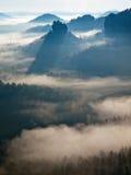 Kall dimmig soluppgång i en nedgångdal av Sachsen Schweiz parkerar Sandstenmaxima ökande från dimma, dimman färgas till apelsinen Royaltyfria Bilder