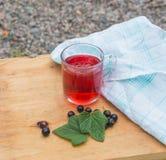 Kall drink av vinbär Royaltyfri Foto