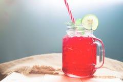 Kall drink för sommar med den skivade citronen och mintkaramellen, uppfriskande sommar Royaltyfri Fotografi