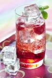 kall drink som sparkling royaltyfria foton