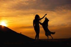 Kall flicka för kontur i hattstag med hunden border collie i fältväg i solnedgång runt om berget arkivbilder