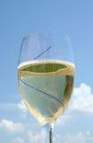 kall glass vit wine 3 royaltyfria foton