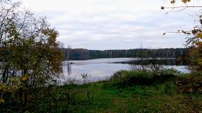Kall himmel av hösten Royaltyfria Foton
