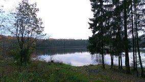 Kall himmel av hösten Arkivfoton