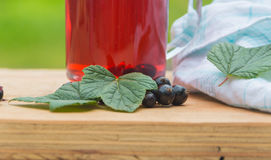 Kall kompott av den svarta vinbäret Arkivfoton