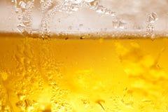 Kall öl Arkivfoton