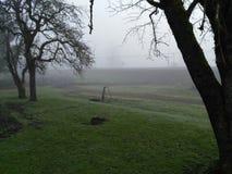 Kall morgon i söderna av Chile Arkivfoton