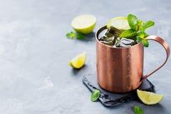 Kall Moskvamulacoctail med ingefärsdricka, vodka, utrymme för kopia för bakgrund för limefruktgrå färgsten Royaltyfri Bild