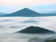 Kall nedgångatmosfär i bygd Den kalla och fuktiga morgonen flyttar sig dimman mellan mörka kullar och maxima av träd Royaltyfri Foto