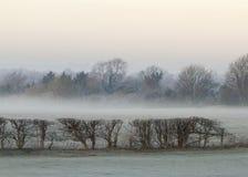 Kall och frostig morgon Arkivfoto