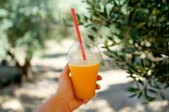 Kall orange fruktsaft i sommaren Royaltyfria Foton