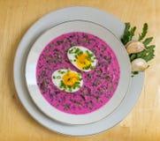 Kall rödbetasoppa (litewski för chÅ'odnik) med ägget Arkivbild