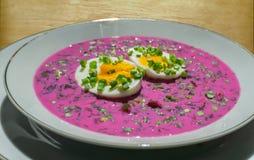 Kall rödbetasoppa (litewski för chÅ'odnik) med ägget Royaltyfria Bilder