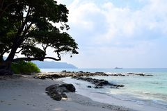 Kall skugga av det kust- trädet på den steniga och fridsamma stranden - landskap på den Radhanagar stranden, Havelock ö, Andaman  royaltyfri foto