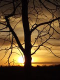 kall solnedgång Arkivfoto