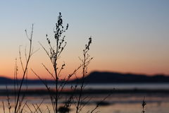 Kall solnedgång i vår vid Trondheimsfjorden Arkivbild