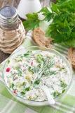 Kall soppa med nya grönsaker och kefir (okroshka) i bunke Royaltyfria Bilder