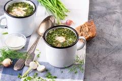 Kall soppa Okroshka i emaljkopp och rå ingredienser på grå färgstentabellen royaltyfri fotografi