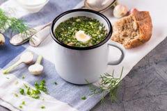 Kall soppa Okroshka i emaljkopp och rå ingredienser på grå färgstentabellen arkivbild