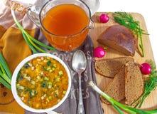 Kall soppaokroshka för traditionell ryss, tillbringare av kvass och bröd royaltyfri bild