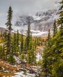 Kall start av hösten i Jasper National Park Fotografering för Bildbyråer