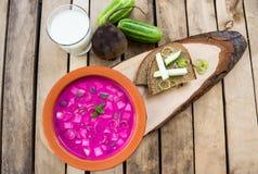 Kall traditionell lithuanian grönsaksommarsoppa gjorde av rödbeta, gurkan, dill, salladslöken och gräddfilkefir arkivbilder