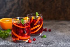 Kall tranb?rfruktsaft med apelsinen och mintkaramellen royaltyfria foton