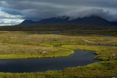 Kall tundra i de polara bergen Arkivbilder