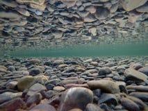 Kall undervattens- flodsäng med perfekt reflexion på yttersida Royaltyfria Foton