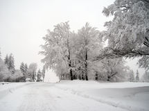 kall vinter Arkivfoto