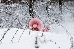 kall vinter royaltyfria bilder