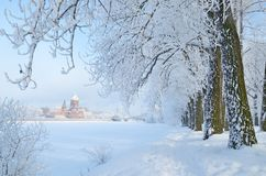 Kall vinter i träna Royaltyfria Bilder