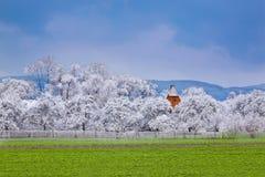 Kall vinter och varm sommar i ett foto Arkivfoto