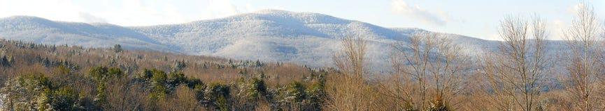 Kall vinterbergpanorama fotografering för bildbyråer