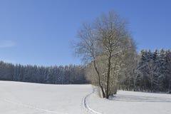 Kall vinterdag i saxon Arkivbilder