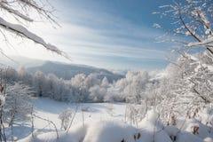 Kall vinterdag som mycket är solig Royaltyfria Foton