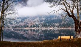 Kall vintermorgon på Bohinj sjön i den Triglav nationalparken Arkivfoto
