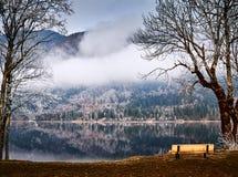 Kall vintermorgon på Bohinj sjön i den Triglav nationalparken Royaltyfri Fotografi