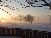 Kall vintersolnedgång Arkivfoto