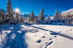 Kall vintersoluppgång i bergen Arkivbild