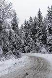 Kall vinterväg Arkivbilder