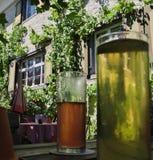 Kalla drinkar i ölträdgården arkivbild