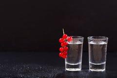 Kalla exponeringsglas av vodka arkivfoton