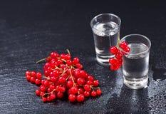 Kalla exponeringsglas av vodka med den röda vinbäret royaltyfri fotografi