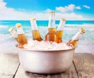 Kalla flaskor av öl i hink med is arkivfoto