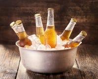 Kalla flaskor av öl i hink med is Arkivbilder