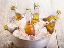 Kalla flaskor av öl i hink med is royaltyfria foton