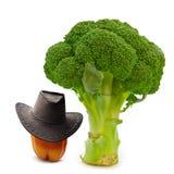 kalla grönsaker Arkivbild