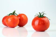 Kalla nya tomater på vit bakgrund Royaltyfria Foton